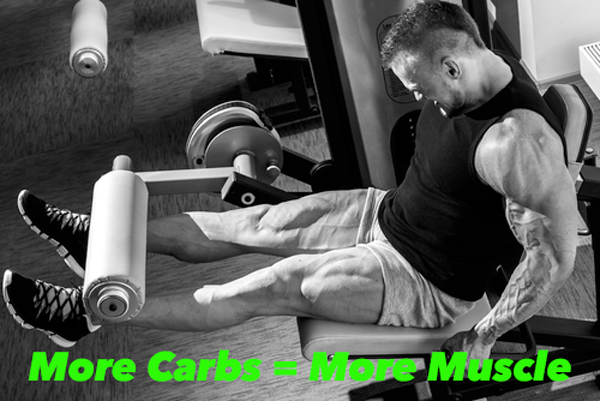 morecarbsmoremuscle